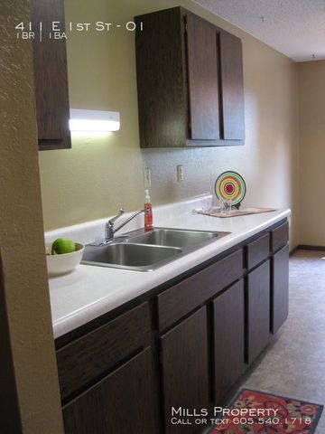 Photo of 411 E 1st St Apt 1, Volga, SD 57071