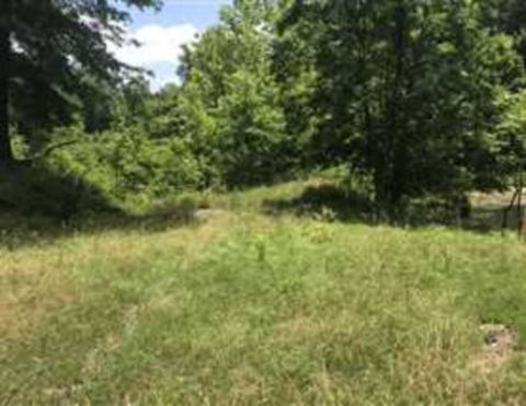 Photo of E Baily Rd, Rich Hill, MO 65622