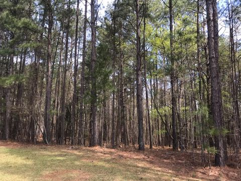 Photo of Stagecoach Rd Lot 13, Dadeville, AL 36853