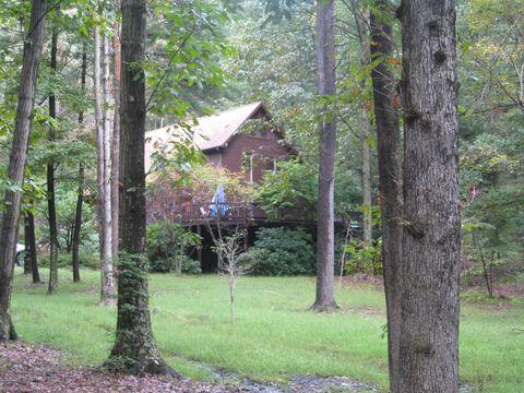 155 Bear Hollow Rd, Elysburg, PA 17824