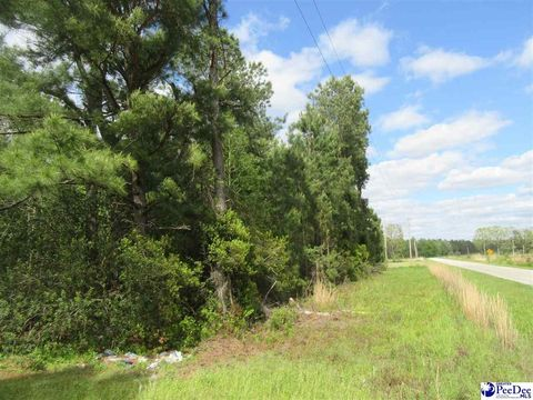 Photo of Jelbean Ave, Cades, SC 29518