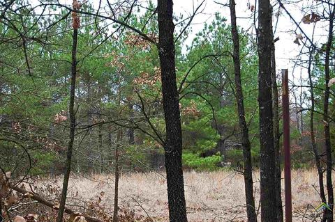 Photo of County 1345 Rd Lot 2, Mount Pleasant, TX 75455