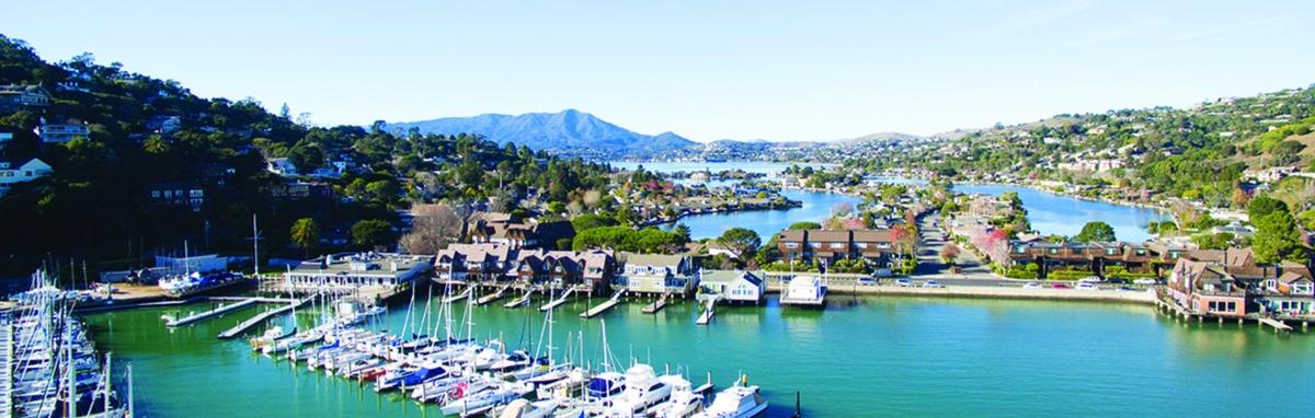 Eckart Noack - Sausalito, CA Real Estate Agent - realtor com®