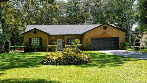 dover fl real estate homes for sale