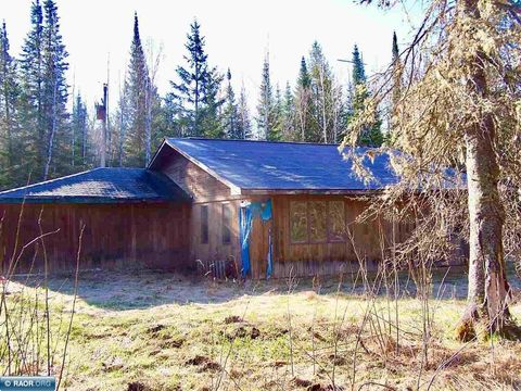 4373 Highway 53, Ray, MN 56669