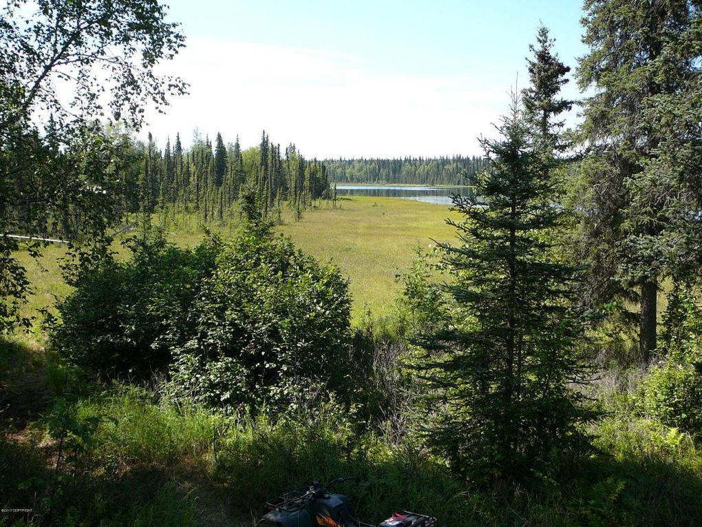 Tr D No Rd, Trapper Creek, AK 99683