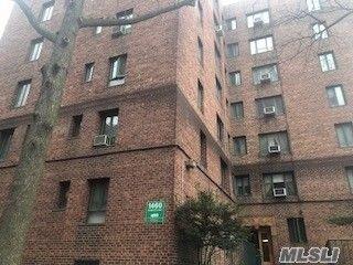 1460 Parkchester Rd Apt Tg Bronx Ny 10462