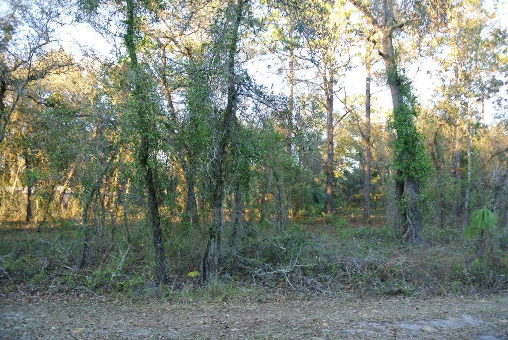 SW Indian Hill Dr Dunnellon, FL 34431