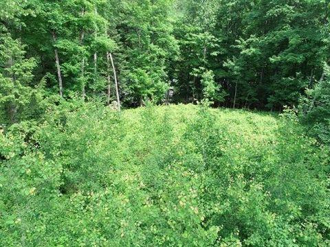 Photo of 6284 N Bambi Land Rd, Mercer, WI 54547