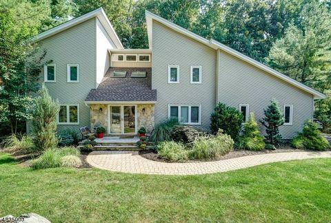 9 Meadow Bluff Rd, Parsippany Troy Hills Township, NJ 07950