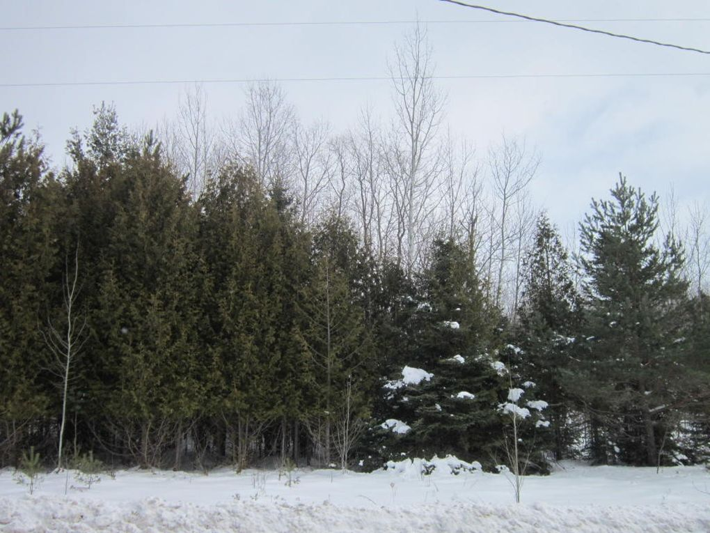 County Road 451 Hwy Unit Schalk Ests Lots 4 & 5, Rogers City, MI 49779