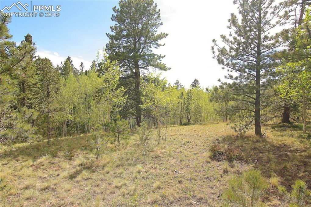3053 County 51 Rd Divide, CO 80814