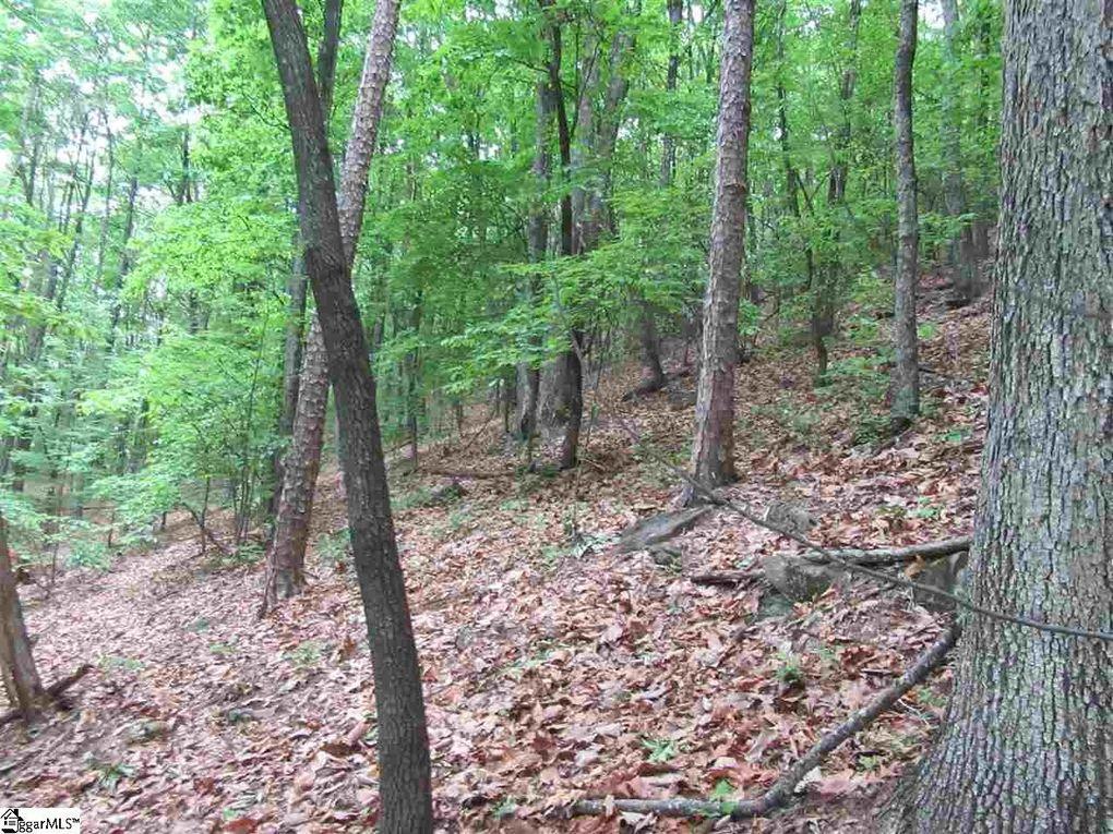 Mountain Ridge Ests, Cleveland, SC 29635