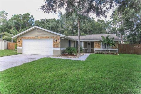 12608 Wood Ibis Way, Tampa, FL 33624