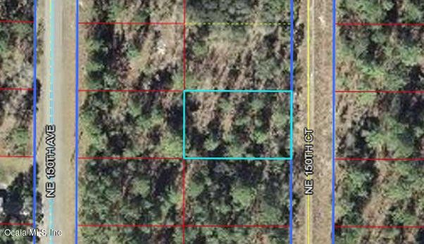 Ne 150 Ct Williston FL 32696 Land For Sale and Real Estate