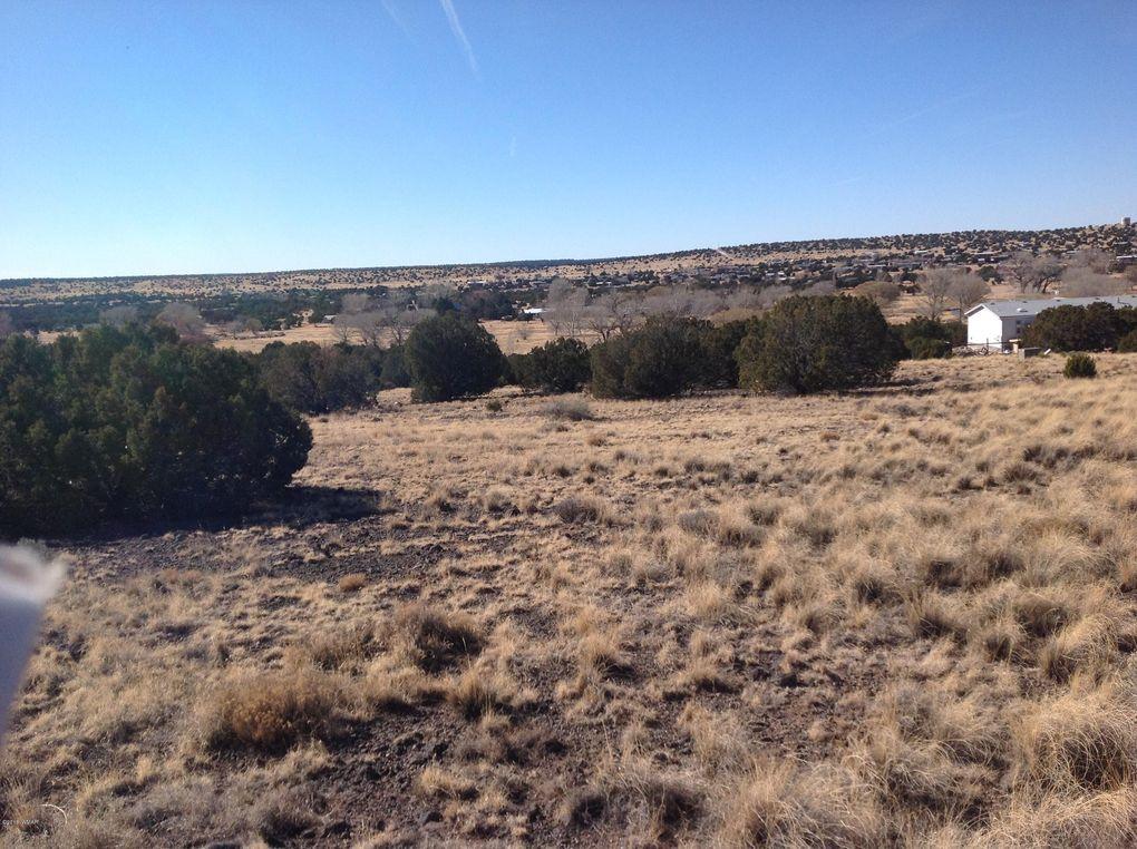 Lott 194 County Road 5081 Concho Valley AZ 85924