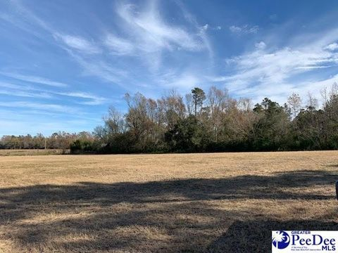 Photo of River Rd, Fork, SC 29543