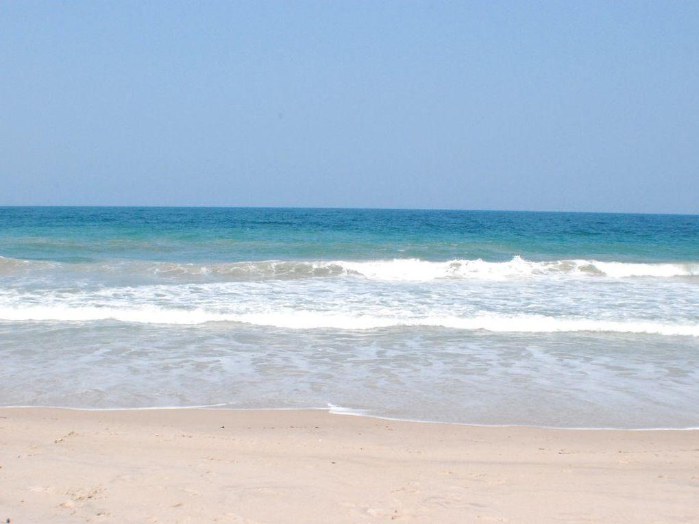 Vero Beach Ap Restaurants