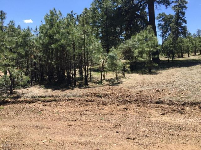 1054 Pond Cir Lot 892 Forest Lakes Az 85931 Home For Sale And Real Estate Listing