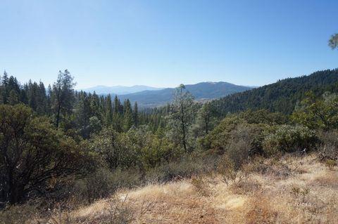 1130 Black Bear Rd, Weaverville, CA 96093