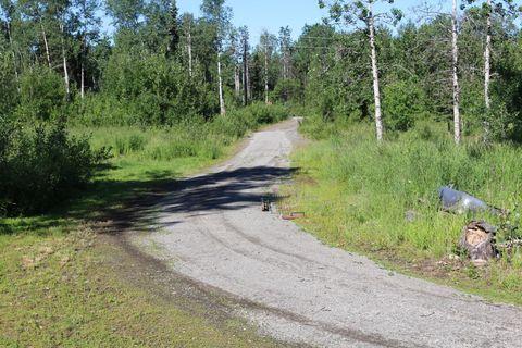 19506 E Montana Creek Rd, Talkeetna, AK 99676