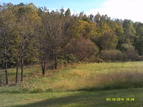 Photo of Hwy Ff, Marble Hill, MO 63762