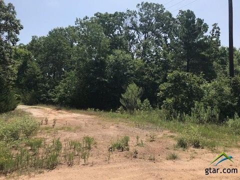 Photo of County Road 2225, Quitman, TX 75783