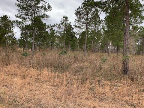 Photo of Old Camp Ln, Salters, SC 29590