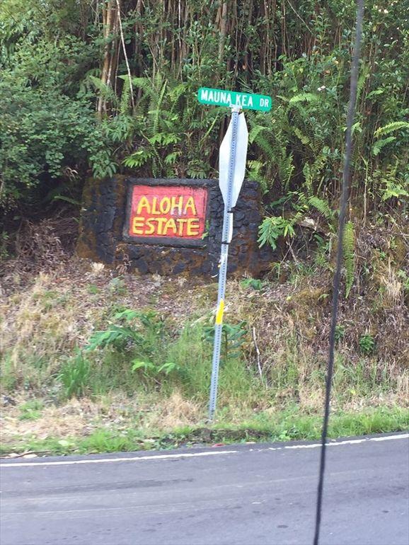 Road # 11 Volcano, HI 96785