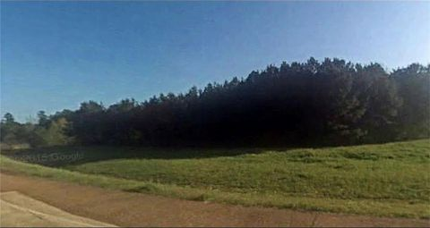 Photo of 49 Lena Flatwoods Ramp S, Lena, LA 71447