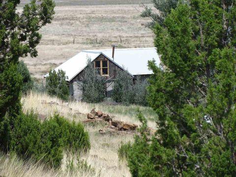 1176 Shw # 271, Wagon Mound, NM 87732