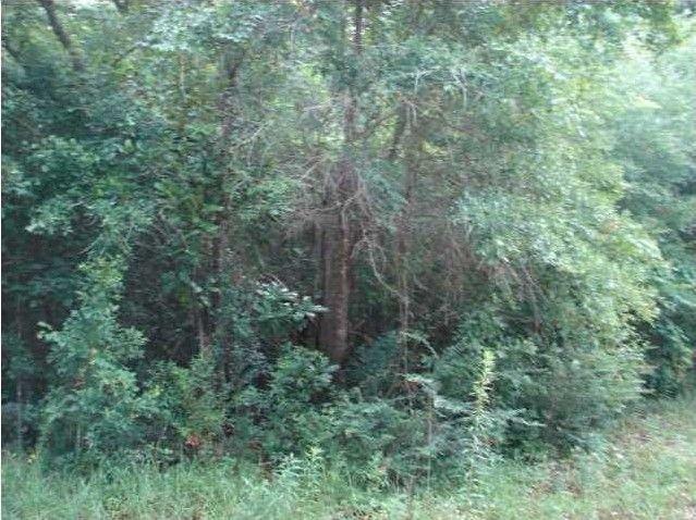 Holly St Units 10 & 11, Magnolia Springs, AL 36555