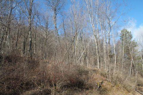 Photo of Kreibich Coulee Rd Lot 1, Coon Valley, WI 54623