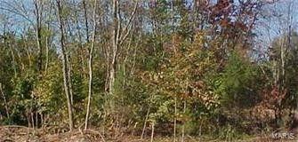 Part Sand Creek Ter Lot 4, Farmington, MO 63640