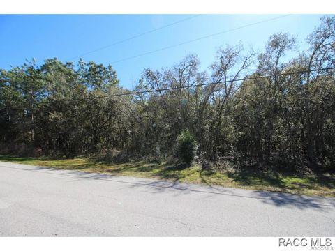 1336 W Olympia St, Hernando, FL 34442