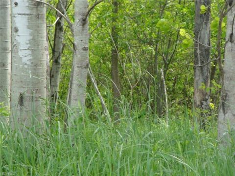 Photo of Rice Rd, Rock Creek, OH 44084