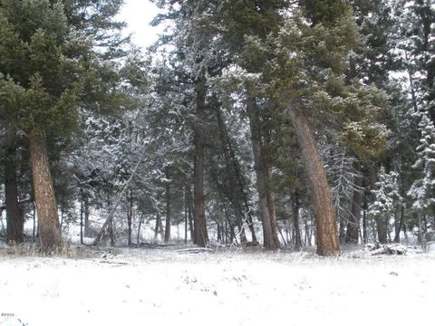 Photo of Nhn East Fork Rd, Sula, MT 59871