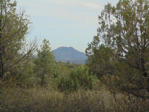 820 Sierra Verde Rnch Unit 820, Seligman, AZ 86337