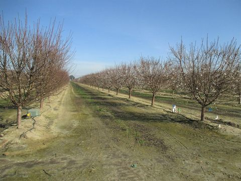 Photo of Berry Rd, Tipton, CA 93272