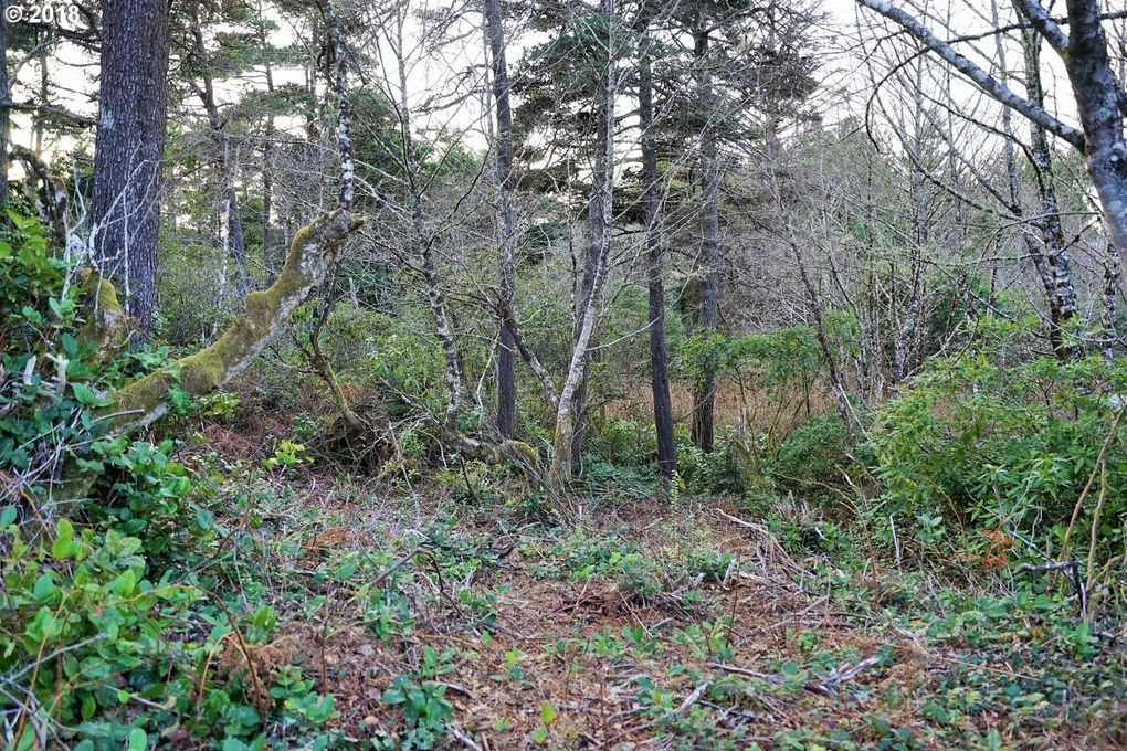1801 Nw Crane St, Seal Rock, OR 97376