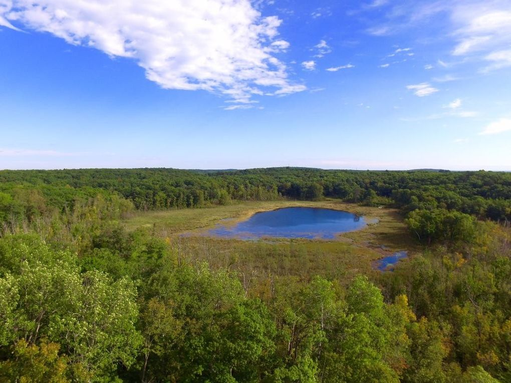 Crow Wing Mn Property Tax