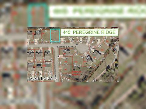 445 Peregrine Ridge Dr New Bern NC Land For Sale and Real