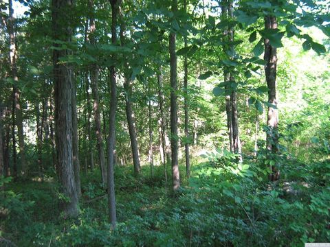Page 3 catskill ny real estate catskill homes for - Gainesville craigslist farm and garden ...