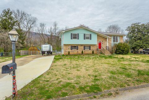 Chattanooga Tn Real Estate Chattanooga Homes For Sale Realtorcom