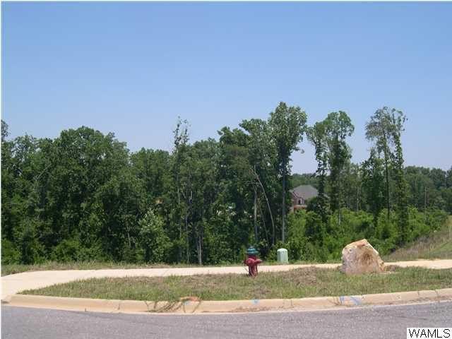 9901 Lake Side Dr Unit 28, Tuscaloosa, AL 35406