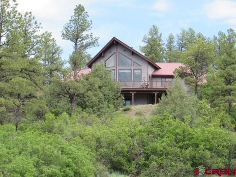 page 7 pagosa springs co real estate homes for sale
