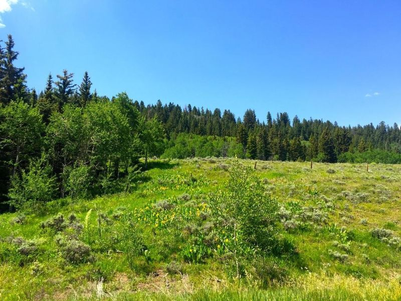 highway 134 kremmling co 80459 land for sale and real