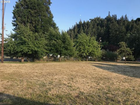Photo of 22nd St, Westfir, OR 97492