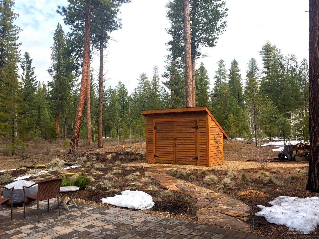 bristlecone pines radiocarbon dating