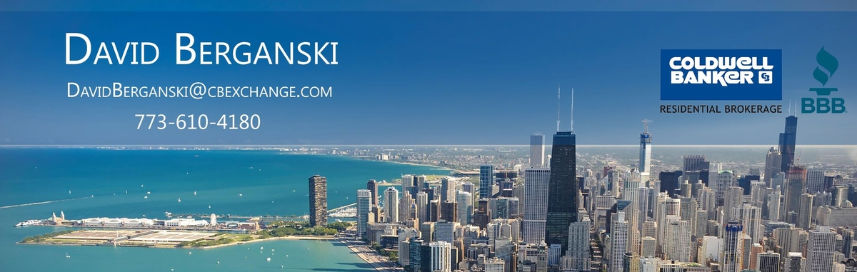 David Berganski - Chicago, IL Real Estate Agent - realtor com®